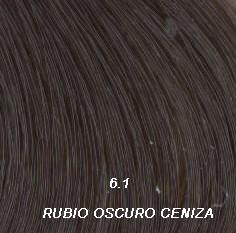 Nº6.1 Rubio Oscuro Cenizas